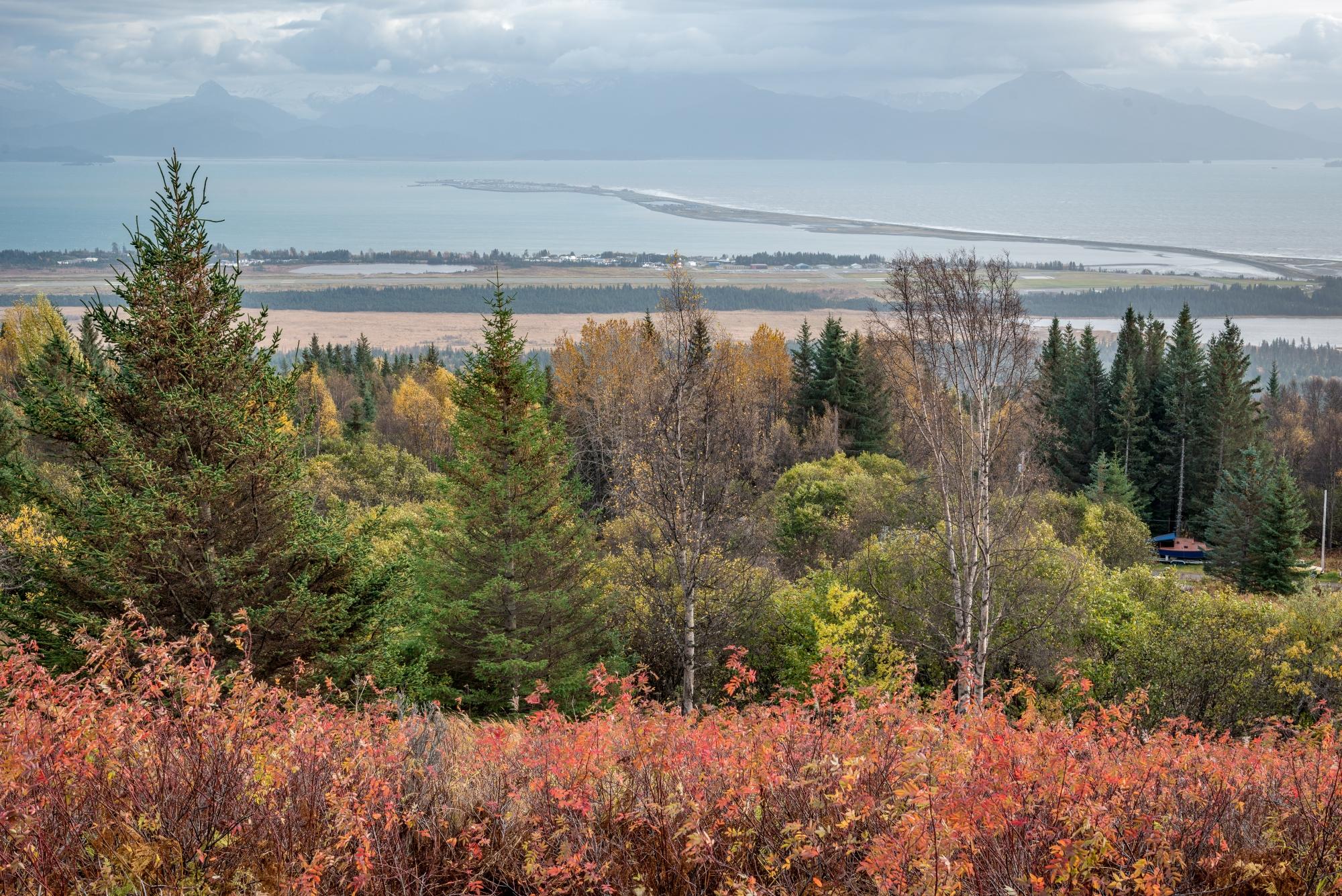 DSC9262 - Overlooking Homer Spit, Homer, Alaska