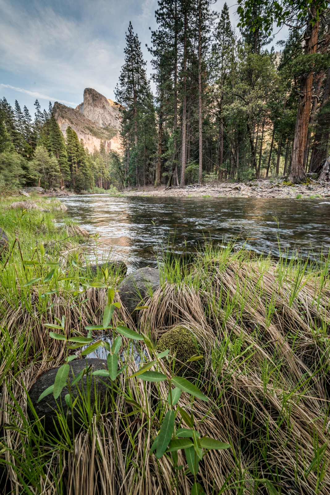 DSC6011 - Merced River Yosemite