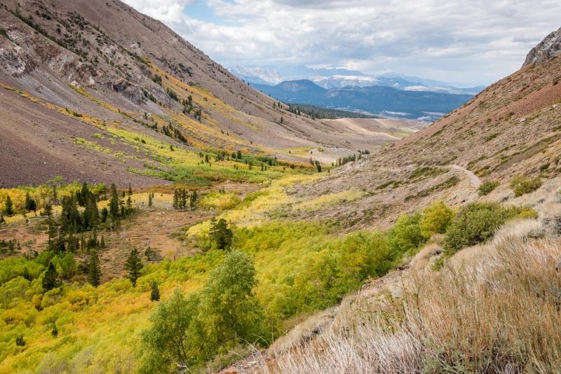 DSC4651 - Autumn Colors along a Four Wheel Drive Road in the Eastern Sierra
