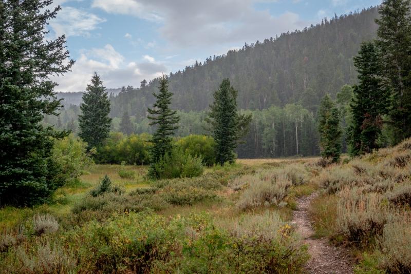 DSC0180 Clearing Rain Great Basin National Park Nevada